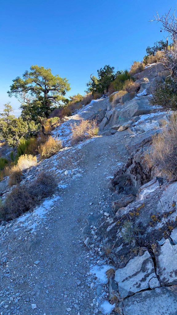 Snow on Turtlehead summit trail