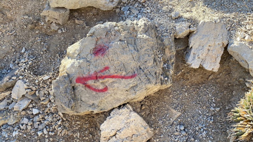 Red arrow on rock marking the Turtlehead Trail