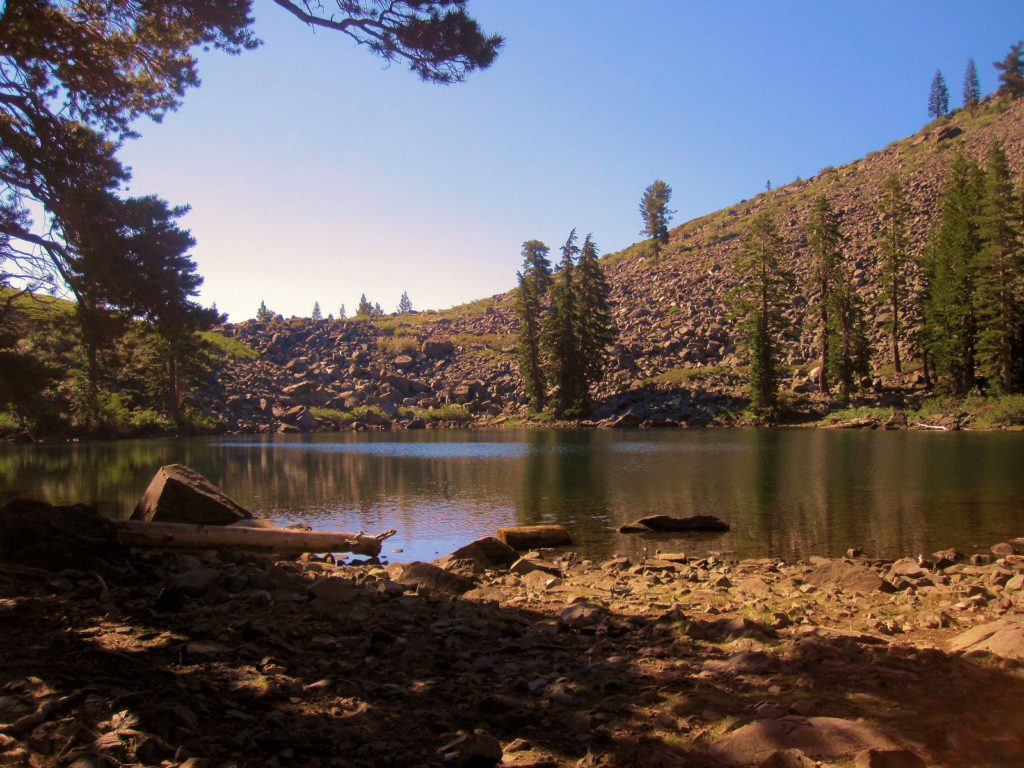 Water on Mt Tallac Trail