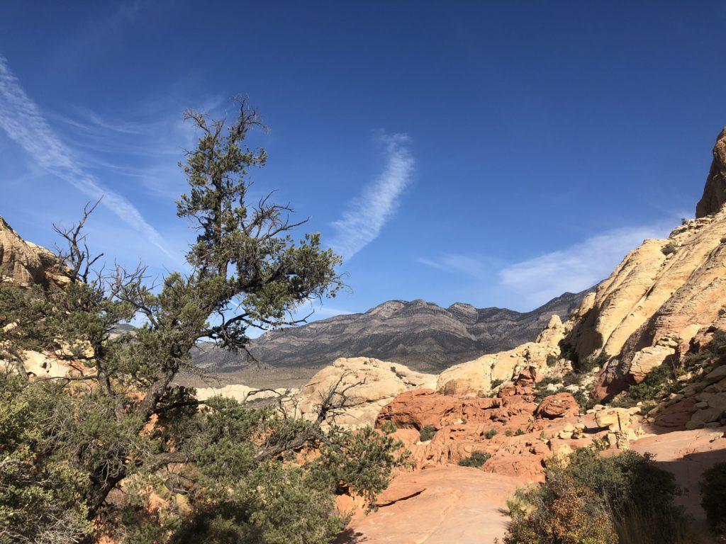 Calico Tanks Trail facing West towards Turtlehead Peak