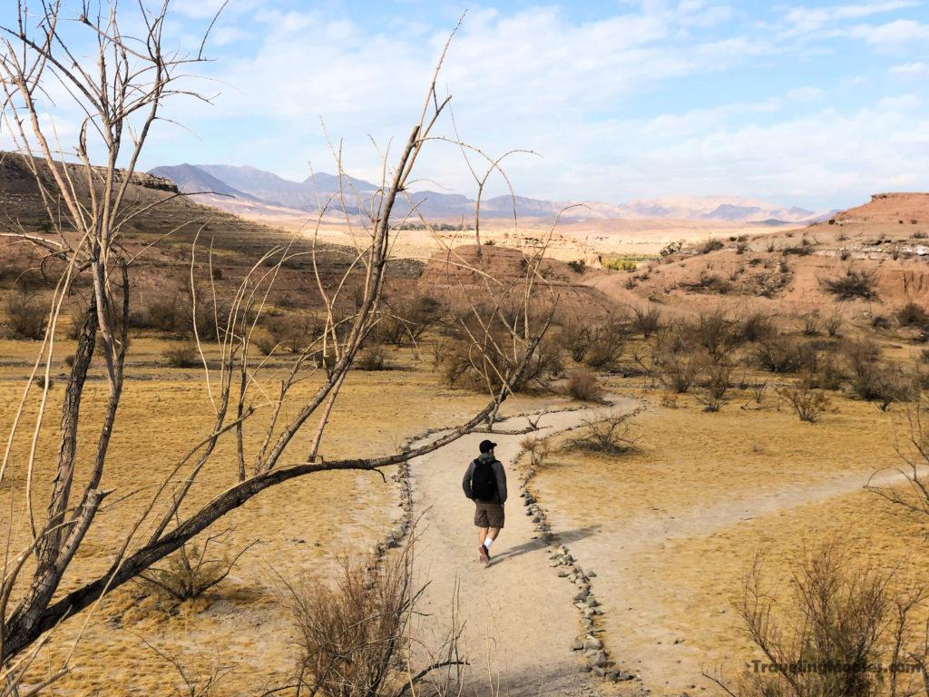 Man walking on path at White Owl Canyon trail