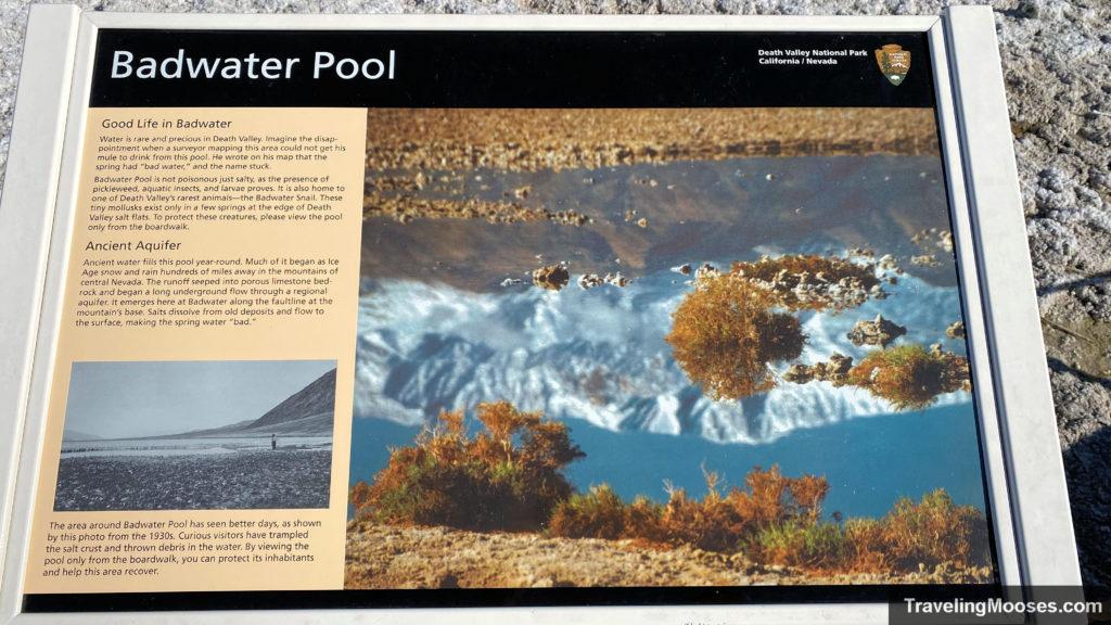 Badwater Pool Interpretive sign