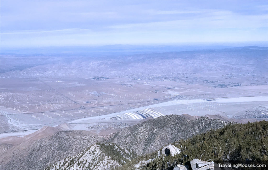 Windmills seen from San Jacinto summit