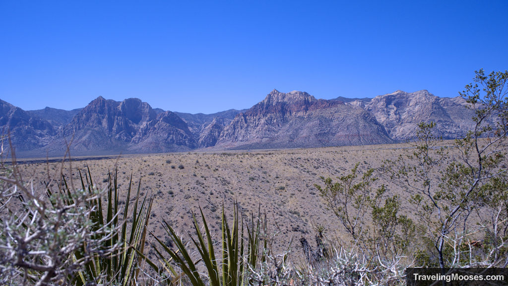 Iconic red rock canyon