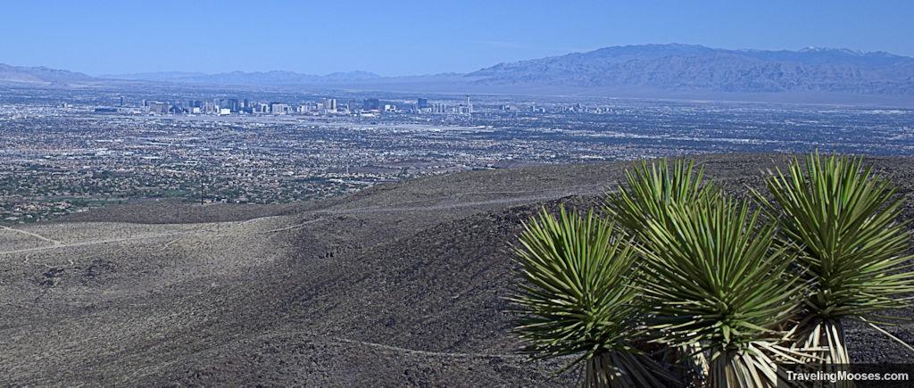 View of Las Vegas from Black Mountain Loop trail