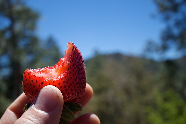 Half eaten strawberry