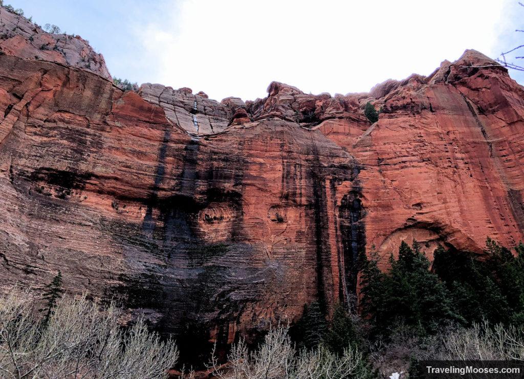 South Fork Taylor Creek Canyon Walls