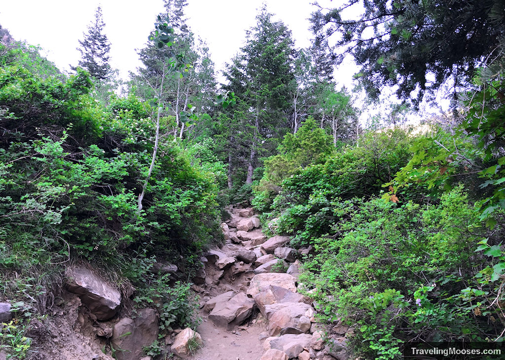 Steep rocky trail in LakeBlanche