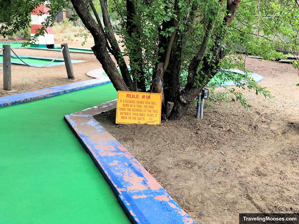 Rule 14 on the mini golf course