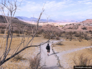Start of Secret White Owl Canyon Trail