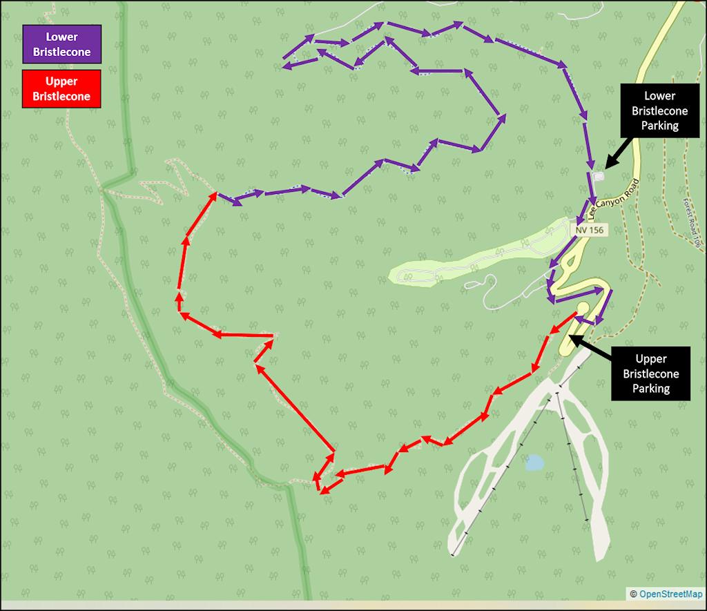 Upper Bristlecone and Lower Bristlecone Trail Map