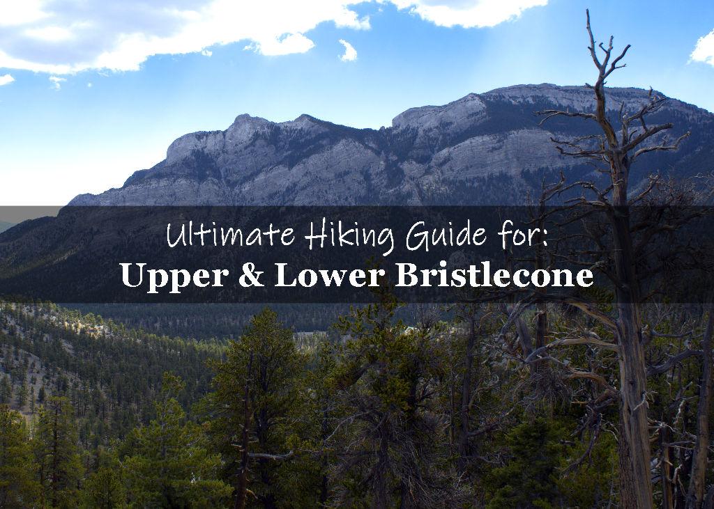 Upper Bristlecone trail to lower bristlecone trail loop