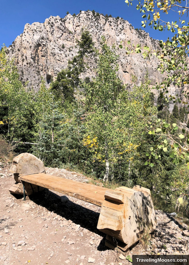 Bench along Cathedral Rock Hike