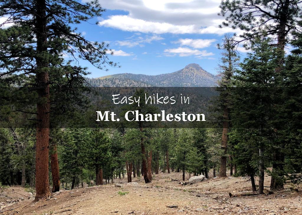 Easy hiking trails Mt Charleston NV