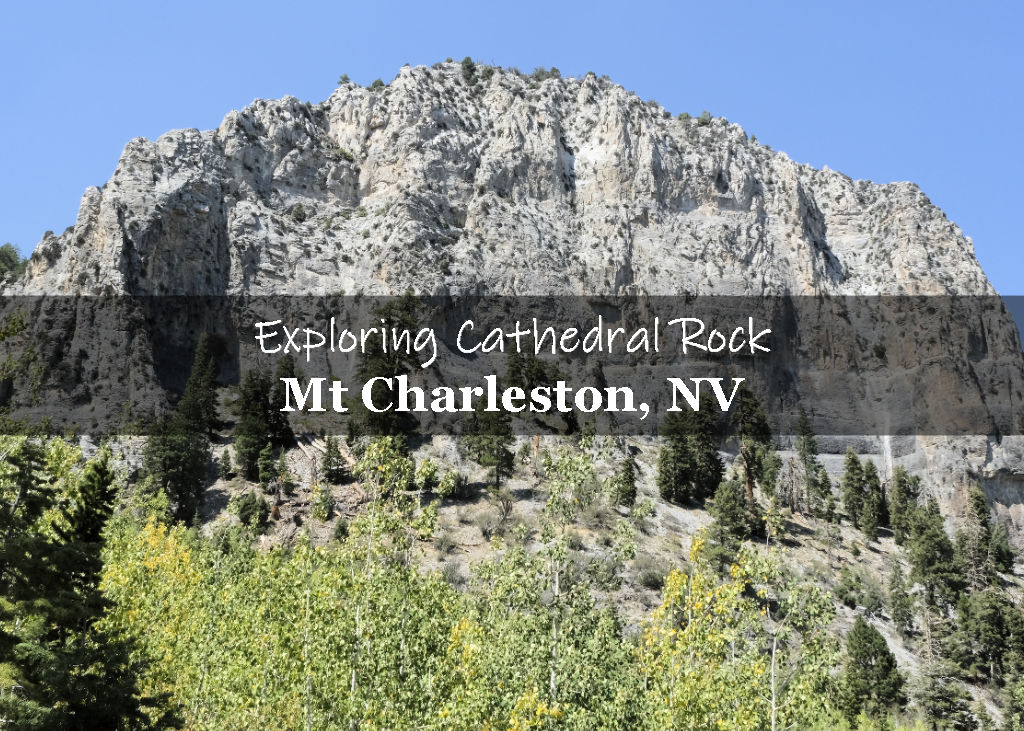 Exploring the Cathedral Rock Trail in Mt Charleston