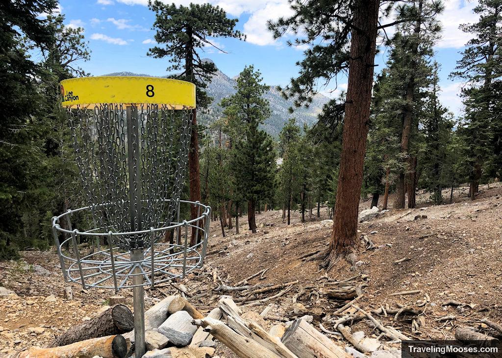 Lee Canyon Disc Golf Hole 8 Basket