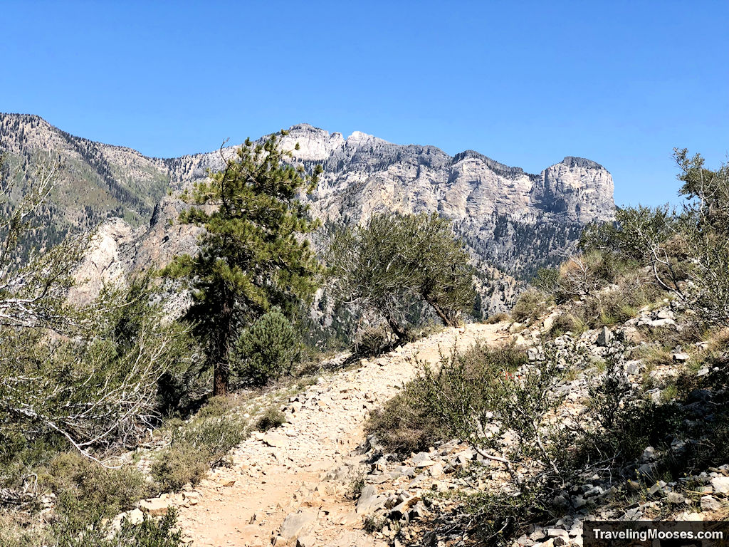 Nearing the summit of Cathedral Rock