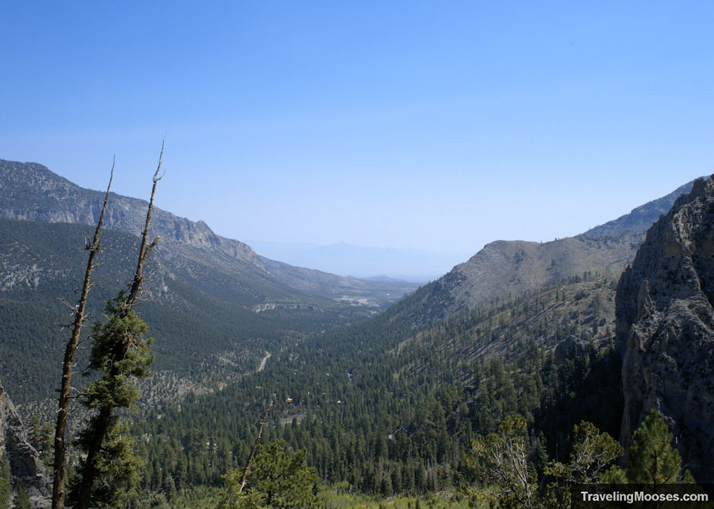 View from Cathedral Rock trail