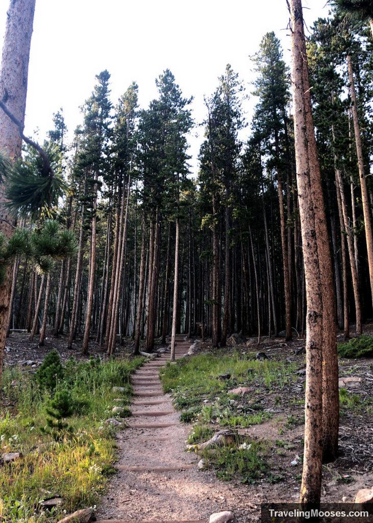 Bierstadt trail start of path