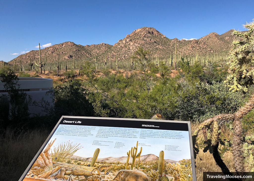 Saguaro Park west visitor center view