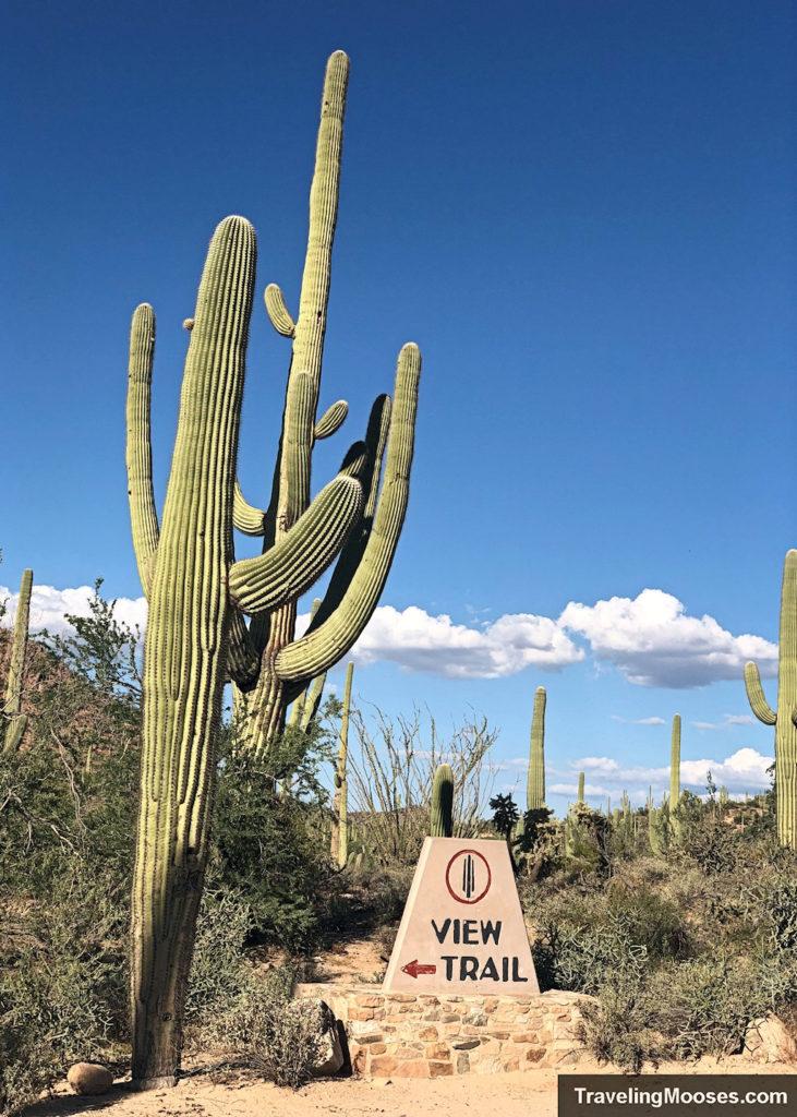Valley View Overlook trail Saguaro park west